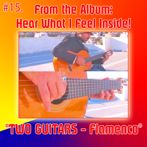 15. two guitars - flamenco