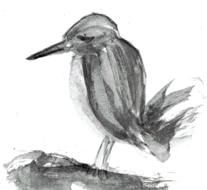 sad bird in watercolor