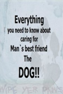 everything you need to know about caring for man`s best friend the dog!!