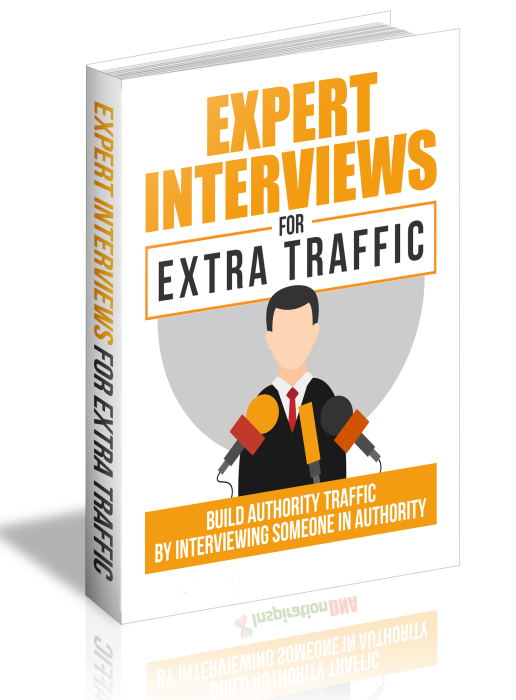 Third Additional product image for - Expert Interviews for Extra Traffic