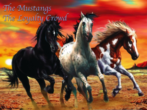the mustangs the loyalty crowd