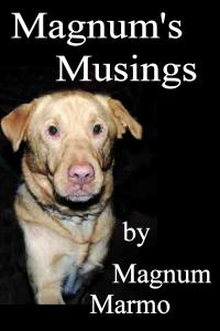 magnum's musings