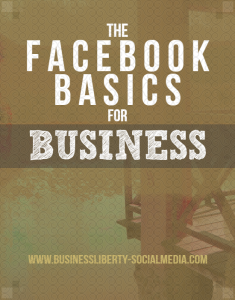 the facebook basics for business