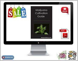 marijuana cultivation guide