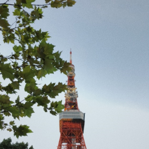 Tokyo tower 3 pm | Photos and Images | Travel