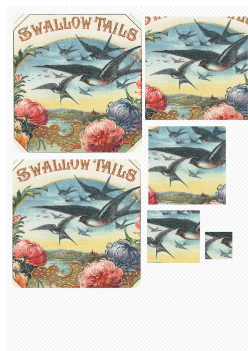 Fourth Additional product image for - Bird 2. Craft papers for cardmaking and scrapbooking