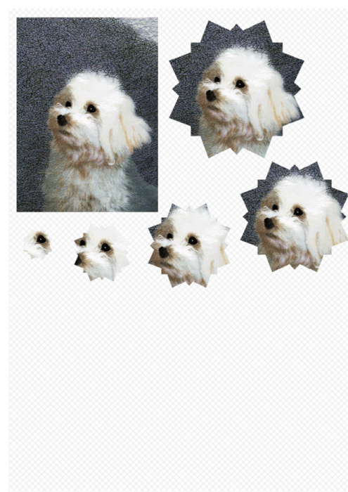 Third Additional product image for - Dog 1. Craft papers for cardmaking and scrapbooking