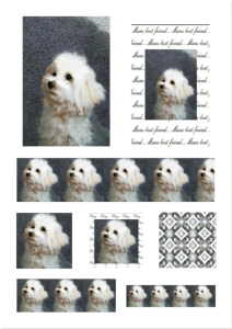 dog 1. craft papers for cardmaking and scrapbooking