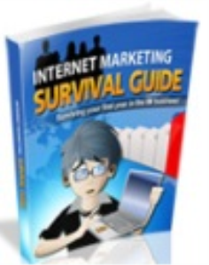 Internet Marketing Survival Guide | eBooks | Internet
