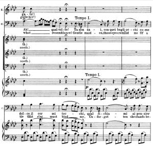 tu non sai conque begli occhi. v. bellini: la sonnambula, act i sc.1. vocal score, ed. schirmer (pd). italian/english.(a4)