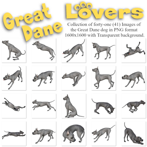 Second Additional product image for - GREAT DANE Lovers Images