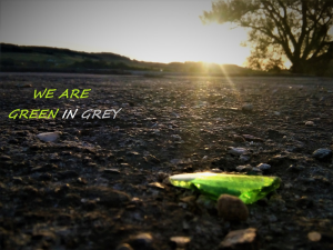 we are green in grey world
