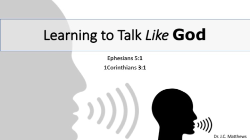 First Additional product image for - Learning To Talk Like God: The Law of Like Kind