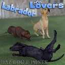 LABRADOR Lovers Poses for Daz Studio and Daz Dog 8 Breed | Photos and Images | Animals