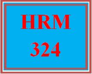 HRM 324 Week 1 Quiz | eBooks | Education