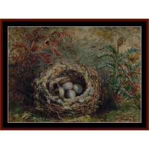 bird's nest - durer cross stitch pattern by cross stitch collectibles