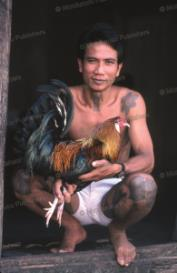 dayak cock-fighter, borneo, 1961