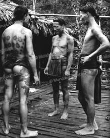 dayak men, borneo, 1961