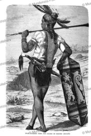 dayak warrior of borneo, robert brown, 1880
