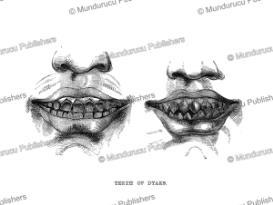 dayak tooth filing, borneo, frank s. marryat, 1848
