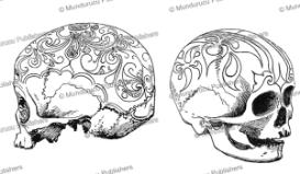 decorated skulls from the east coast of borneo, henry ling roth, 1896