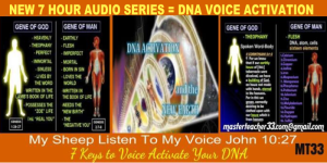 voice activated dna - homo novus - 12 hour series