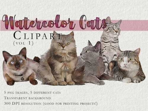 First Additional product image for - Cute CAT set, Kawaii cat clipart instant download PNG file – 300 dpi