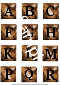 amphibian alphabet