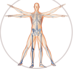 anatomical meditation for cancer people