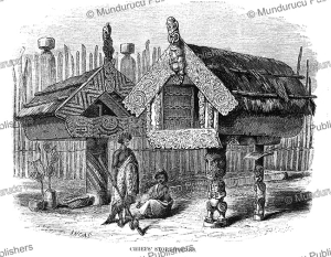 Maori chief's storehouse, George French Angas, 1845 | Photos and Images | Travel