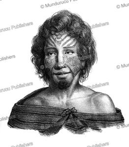 native of tasman bay, louis auguste de sainson, 1833