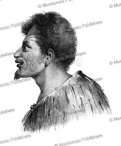 Native of Tasman Bay, Louis Auguste de Sainson, 1833 | Photos and Images | Travel