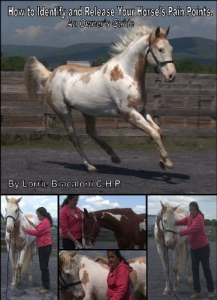 How To Identify & Release Your Horses Pain Points | Movies and Videos | Educational