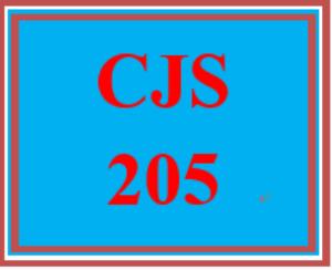 CJS 205 Week 5 Technology in Criminal Justice Presentation | eBooks | Education
