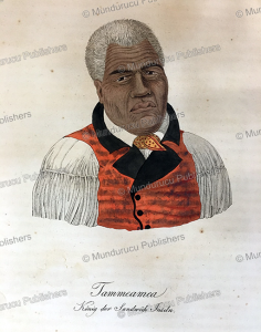 tammeamea or kamehameha the great, founder of the kingdom of hawaii, ludwig choris, 1821