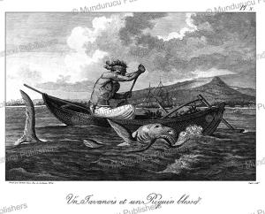 javanese man and a wounded shark, tardieu l'ai^ne´