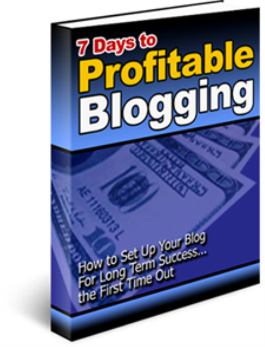 First Additional product image for - 7 Days To Profitable Blogging