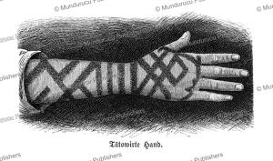 Tattooed Ainu hand, Gustav Kreitner, 1881 | Photos and Images | Travel