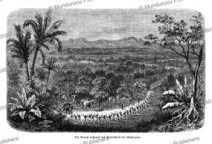 rounding up elephants, ceylon (sri lanka), gustav spiess, 1864