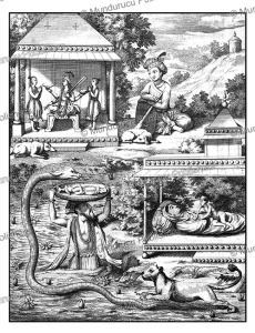 krishna, the eighth eighth of vishnu, ceylon (sri lanka), philippus baldaeus, 1672