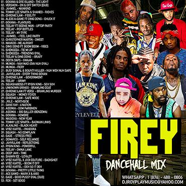 Dj Roy Firey Dancehall Mix 2019