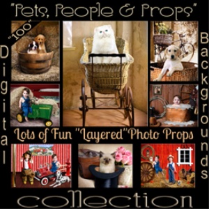 digital photography backgrounds for pets & people with psd layered studio posing props k