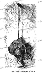 mundurucu headhunters trophy, friedrich ratzel, 1894