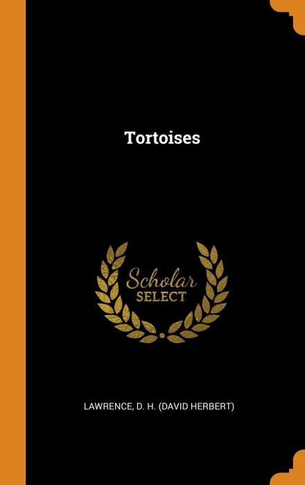 First Additional product image for - Tortoises