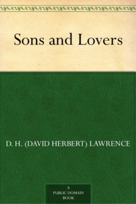 First Additional product image for - Sons and Lovers