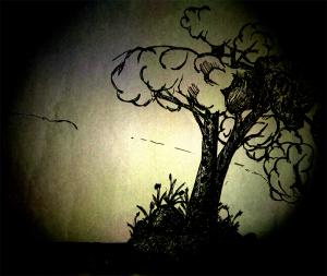 drawn tree