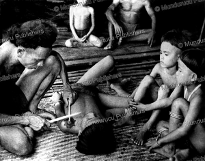 iban boy receiving a bunga terong tattoo design, borneo, 1961