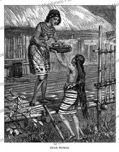 Dayak women, Borneo, Johann Baptist Zwecker, 1870   Photos and Images   Travel