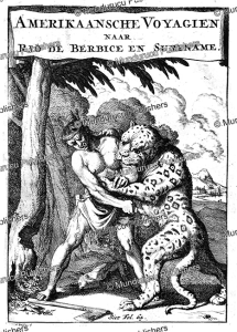 Indian attacked by a leopard, Surinam, Caspar Luyken, 1695 | Photos and Images | Travel