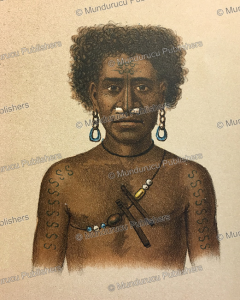 Papua of Kurudu Island with decorative tattoos on his arm, Papua New Guinea, F. W. van der Waarde, 1893 | Photos and Images | Travel